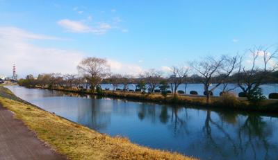 千波湖1.jpg
