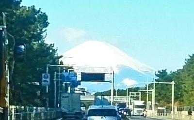 国道135号富士1.jpg