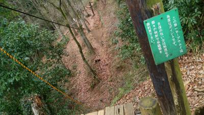 東丹沢ロープウェイ1.jpg